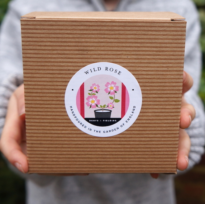 Wild Rose Vegan Friendly Soy Candle - Liz Ridgway