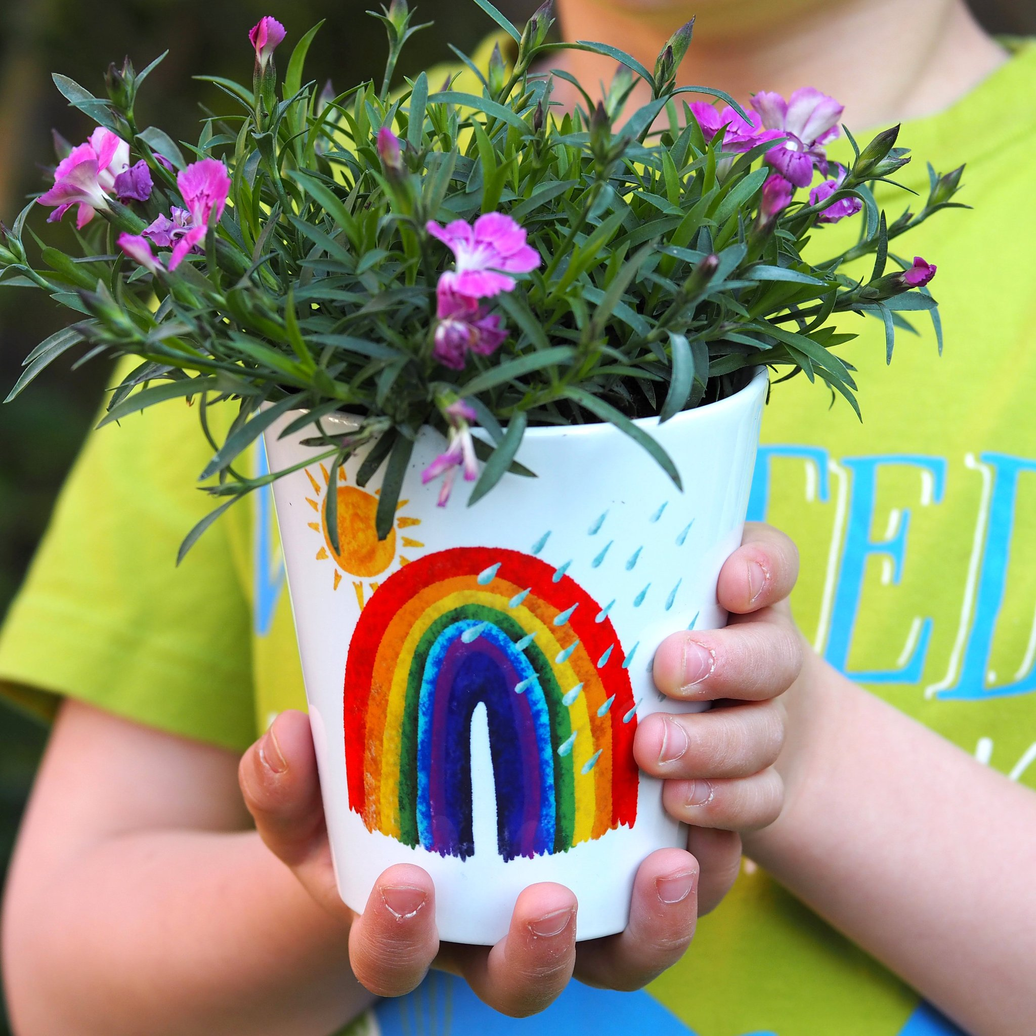 rainbow pot - Claire Close